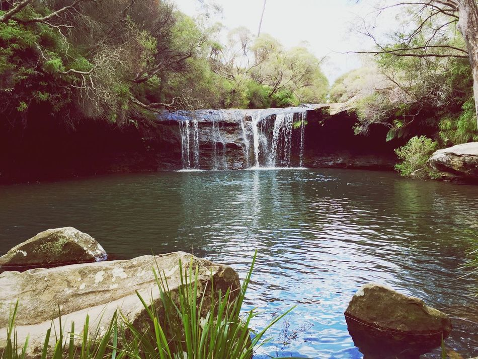 Exploring Australia Water Nature Tree Beauty In Nature Tranquility Outdoors Scenics Day No People Waterfall Rock - Object Motion Freshness IPhoneography Explore Travel Australia EyeEmNewHere
