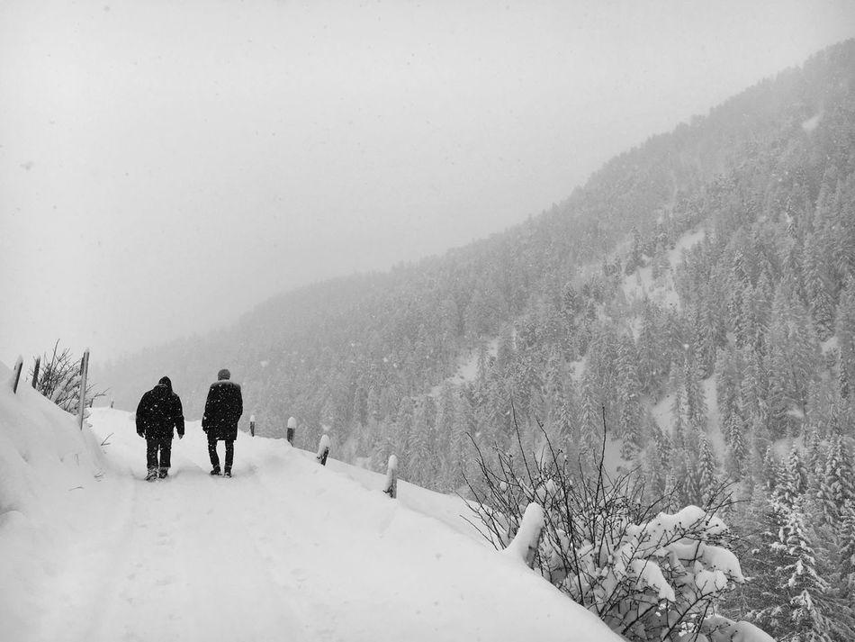Blackandwhite Eye4photography  Traveling Snow Landscape The Minimals (less Edit Juxt Photography) Showcase: January It's Cold Outside Langwies Switzerland