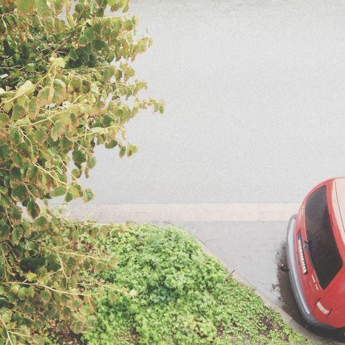 Red Cars Are Quite Rare, I Realize Urban Minimalobsession Minimalism