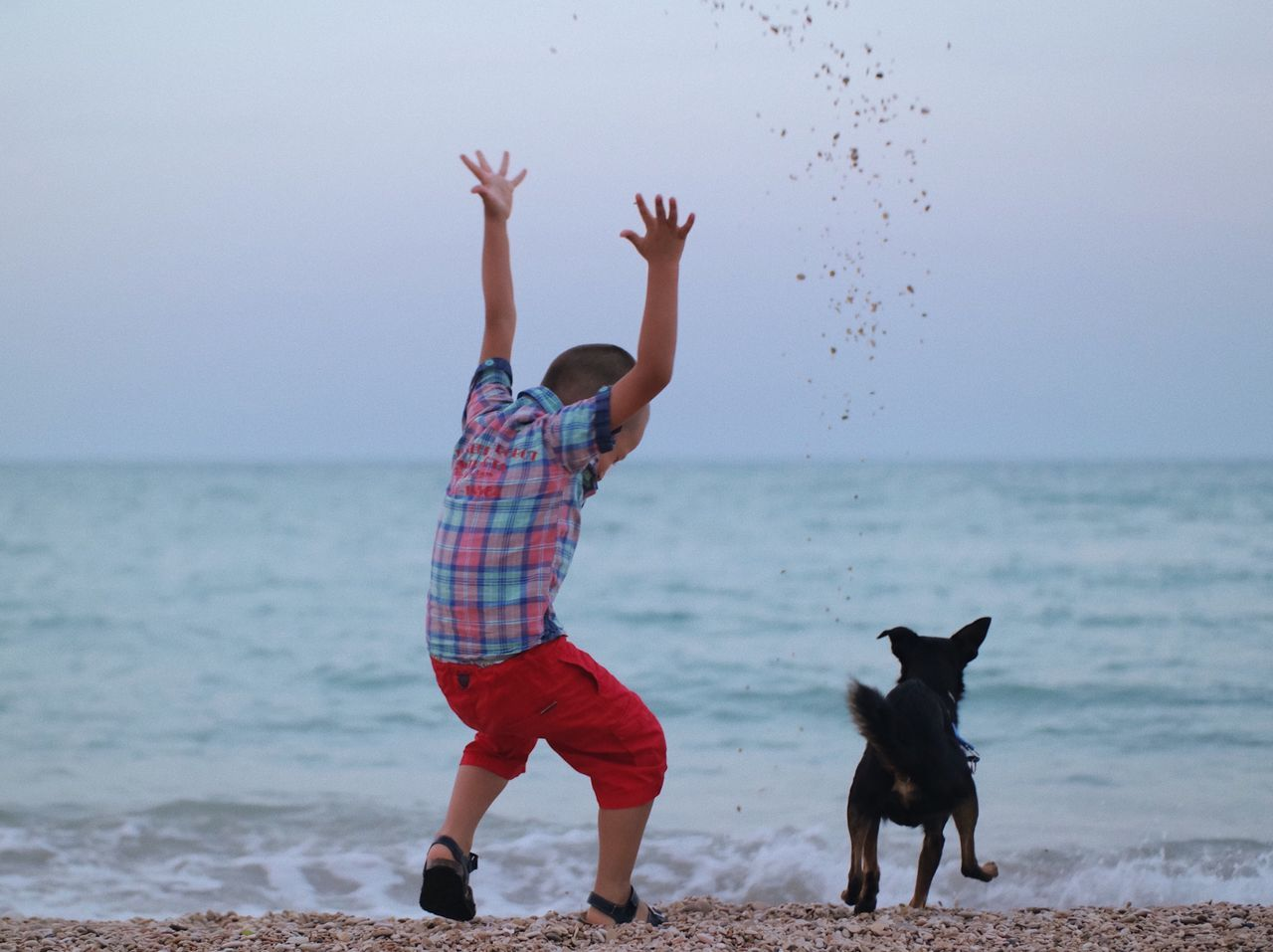 Game pals... Sea Beach Dog Pets One Animal Water Animal Themes Horizon Over Water Domestic Animals Outdoors Sand Leisure Activity Motion Nature Lifestyles Sky One Person Day Throwing  Summer Fun Playing Playtime Childhood Enjoying Life