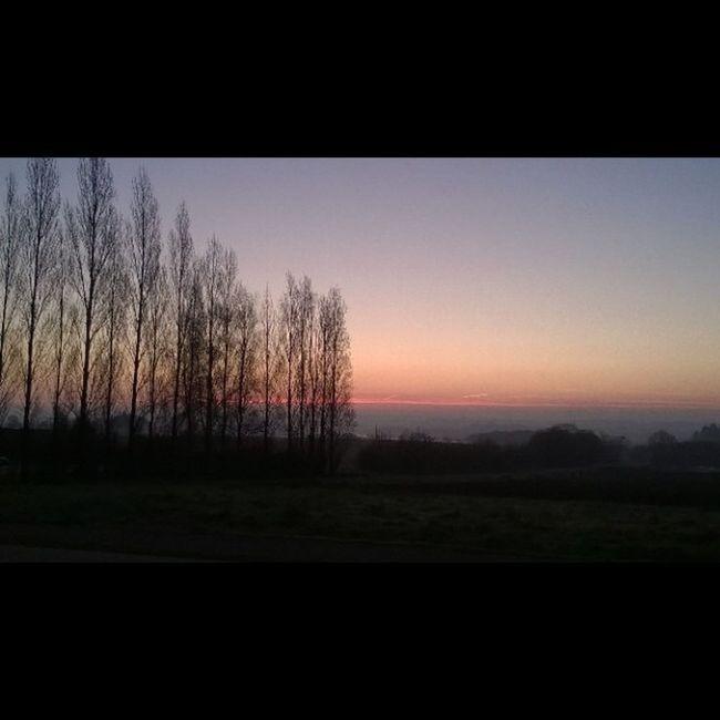 Easter Sunrise / Leverdesoleil de Paques à Taupont Bretagne Jaimelabretagne Miamorbihan Morbihan Breizh Arbres Trees Nofilter Sun Soleil Sonne Sole Sol