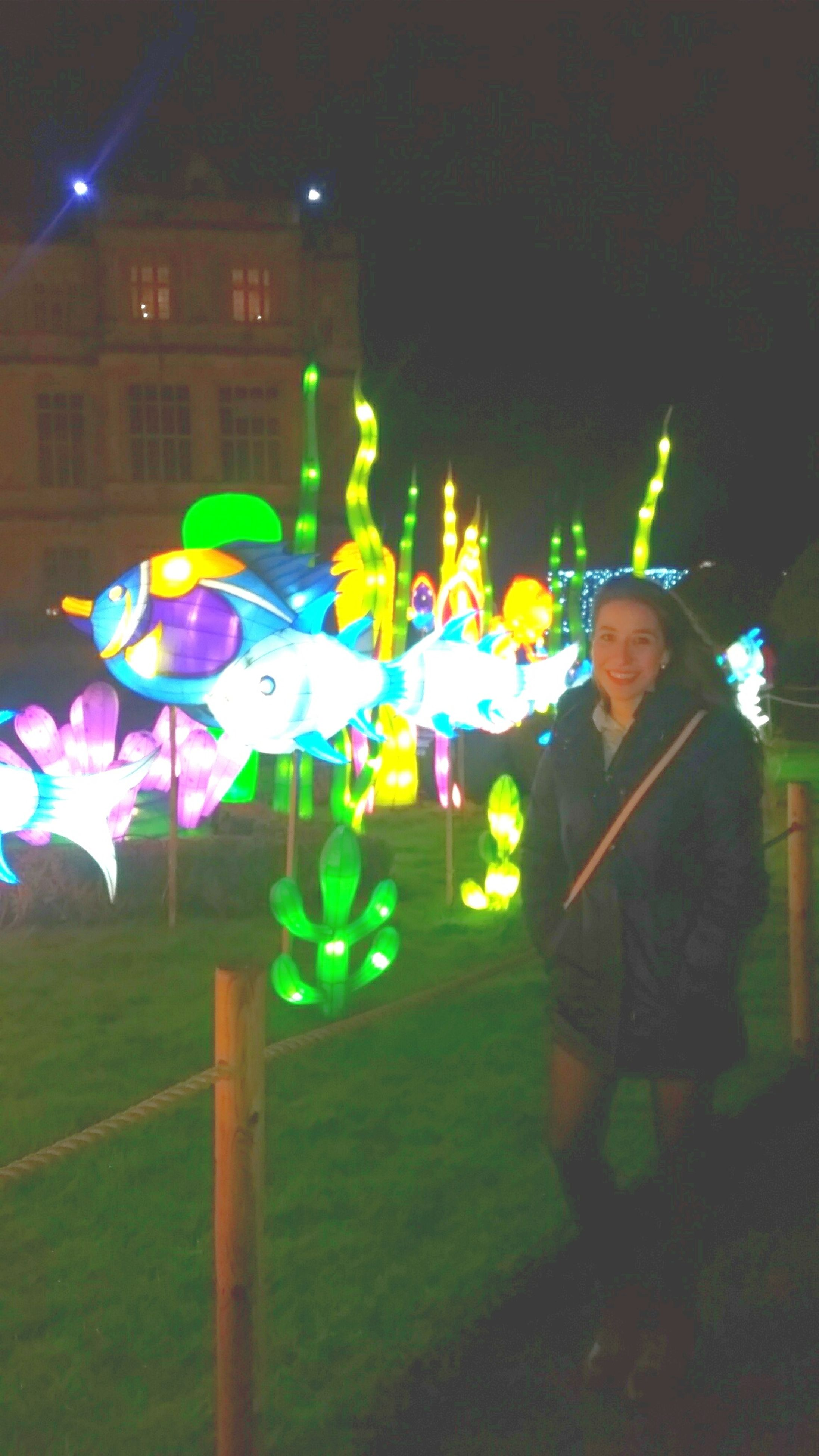 illuminated, night, multi colored, lighting equipment, street light, blue, light - natural phenomenon, sport, outdoors, grass, colorful, green color, celebration, in a row, leisure activity, decoration, arts culture and entertainment, no people, street, incidental people