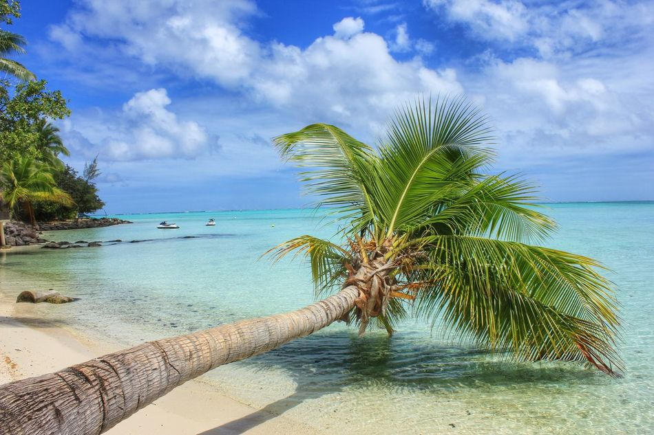 Beautiful stock photos of jamaica, Beauty In Nature, Cloud, Cloudy, Day