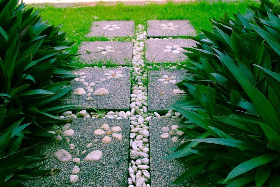 Garden Flowers,Plants & Garden Plants Stone Pathway Walking Path Nature On The Way Way Walk Through