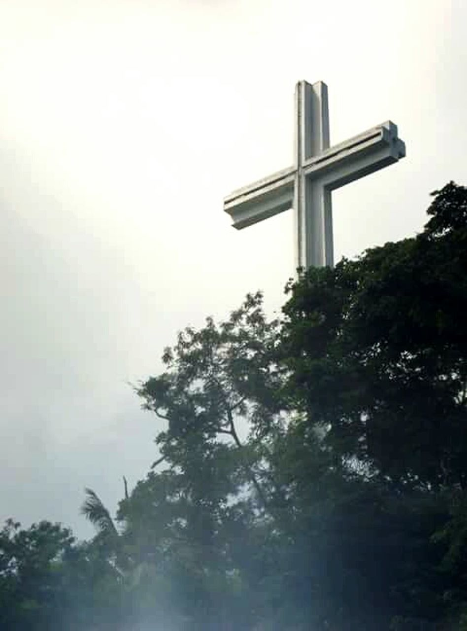 tree, religion, cross, no people, spirituality, outdoors, day, low angle view, nature, sky