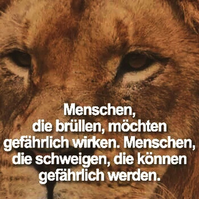 Made My Day True Words Spruch Des Tages