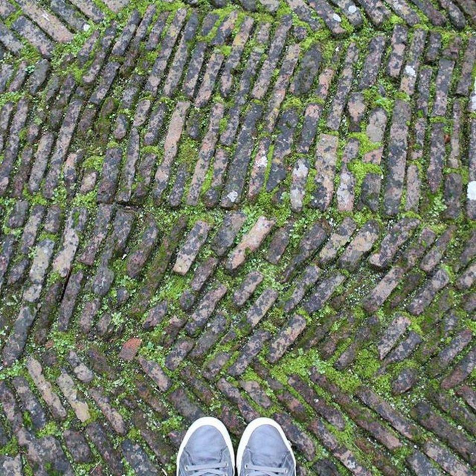Feet & Floor II Myvallo Igers_salerno Igerscampania Igeritalia Dafareasalerno Dafareincampania Insolitaitalia Campaniafelix Fromwhereistand Floor Feet Green Story Igersgallery Igersoftheday Ihavethisthingwithfloors