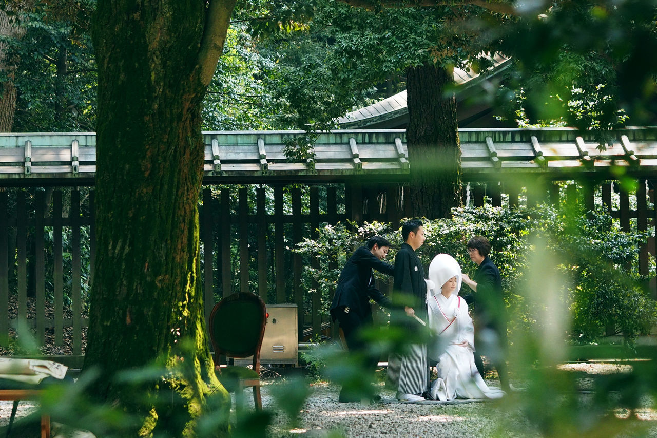 Taken in a shrine in Tokyo. Amazing experience to witness a Japanese wedding! Day Green Green Color Japan Weekend Japanese Marriage Japanese Wedding Love Marriga Nature Outdoors Stand Out From The Crowd Traditional Traditional Culture Traditional Japanese Garden Traditional Japanese Wedding Traditional Wedding Tree Trees Ultimate Japan We Wood Colour Of Life Battle Of The Cities