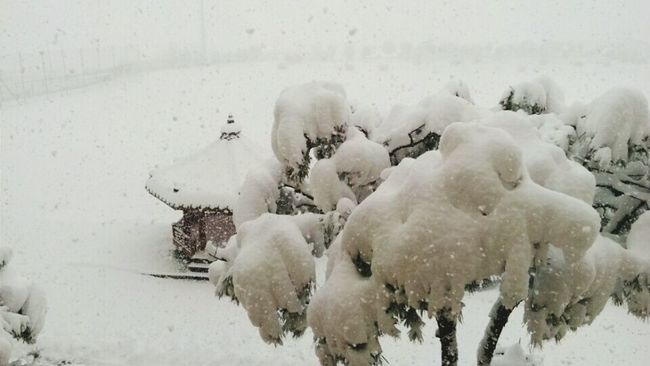 Heavy Snowing