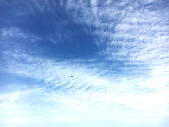 Sky Space Tiny Plane No End Blue Clouds And Sky Time To Travel Taking Pictures Hello World