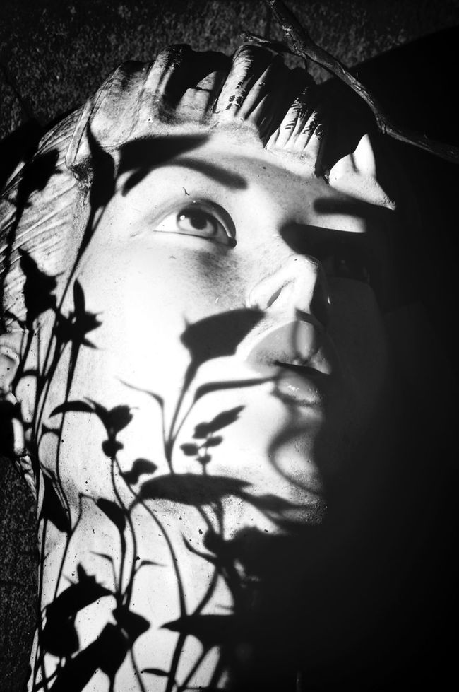 """We rented a lovely little flat in Paris through Airbnb, it was owned by a photographer and had amazing props decorating the place. """"The Mannequin"""" just sat there on their balcony with beautiful shadows adorning its frigid face. Black & White Iloveprintshop Portait Light And Shadow"""