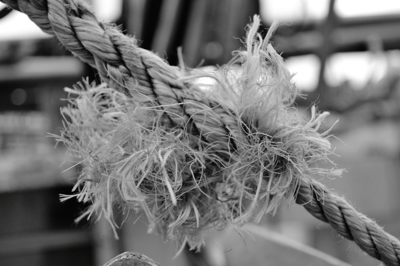 Focus On Foreground Close-up Outdoors Day No People Harbor Commercial Dock Habourside Fishing Ship Water Sea Fishing Boat Blackandwhite Netting Tall Ship Rope