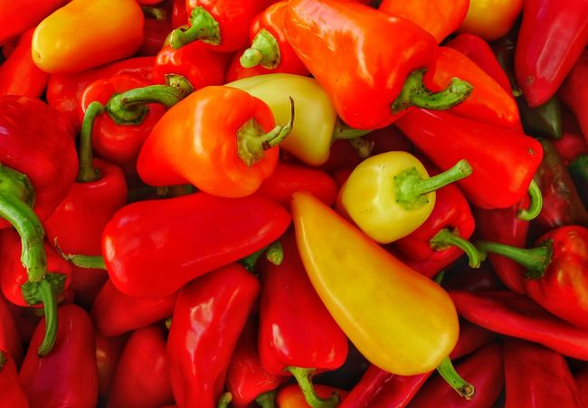 Brush up on your Spanish; caliente de entrar, salir caliente tambien!😮👿 Peppers Close-up Nature's Bounty Colorful Photography