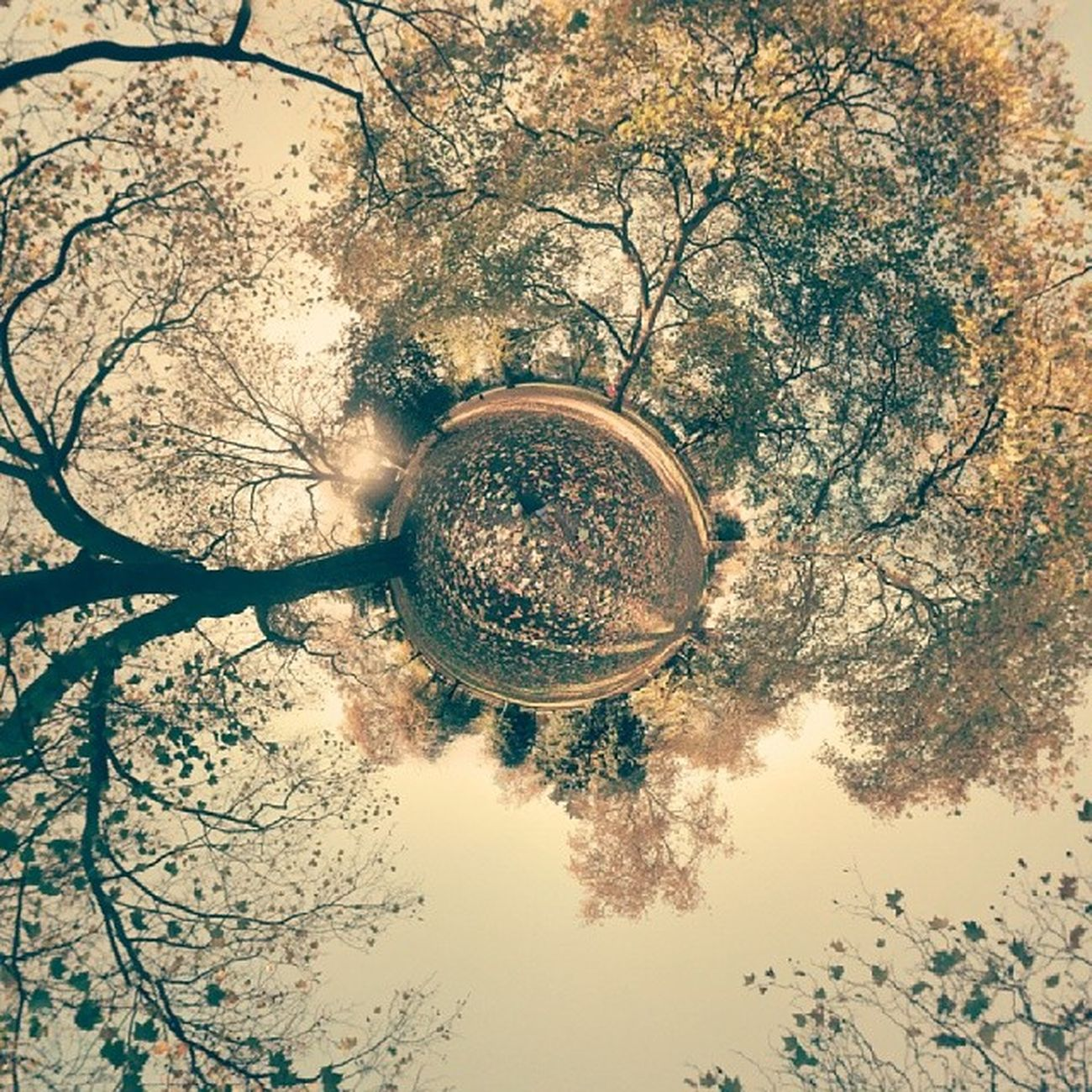 Autum in Kennington Park Tinyplanet photosphere insta_uk london uk
