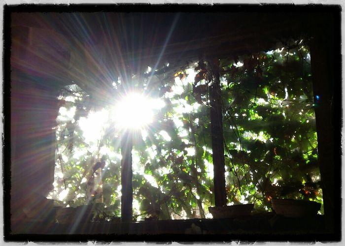 Sunshine Abandoned AMPt - Abandon Windowporn