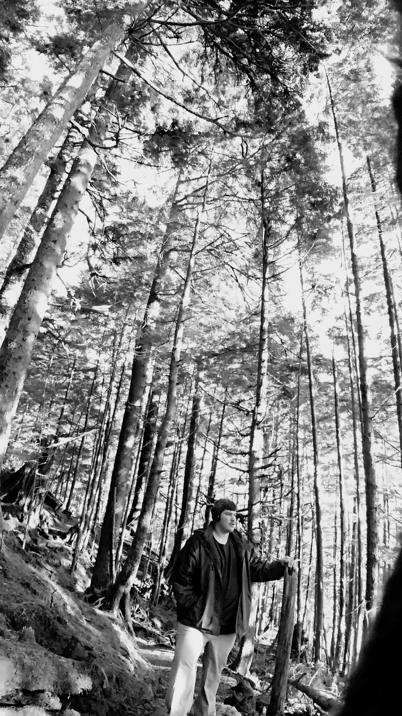 Moments Of Life Remembrance Tree One Man Only Outdoors EyeEm Nature Lover Black And White Photography Forest Only Men Low Angle View Thats Me! Brisk Walk Beauty In Nature EyeEm Best Shots Selfienation took a moment to center myself