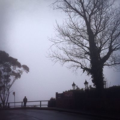 blackandwhite at blue mountains by Gina Lynch