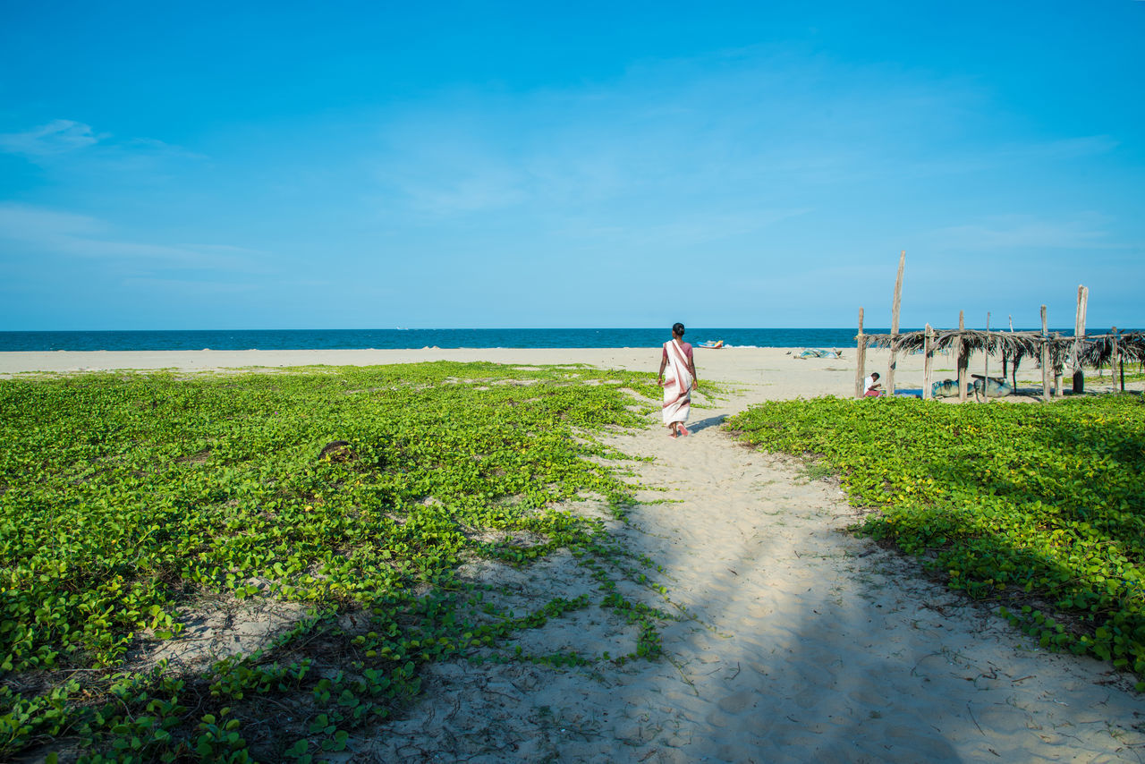 sea, water, horizon over water, sky, nature, scenics, real people, beauty in nature, one person, tranquil scene, day, rear view, full length, outdoors, blue, tranquility, leisure activity, grass, lifestyles, standing, beach, women, people