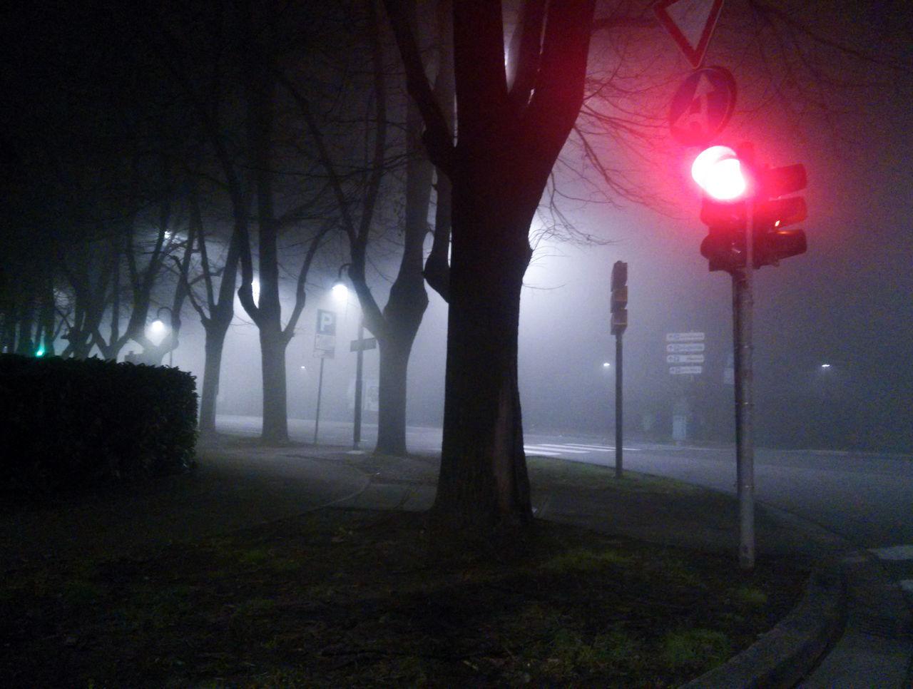 Night Fog Illuminated Tree Traffic Lights Lighting Equipment Sky Surreal Landscape No People Forest Nature Outdoors Moon