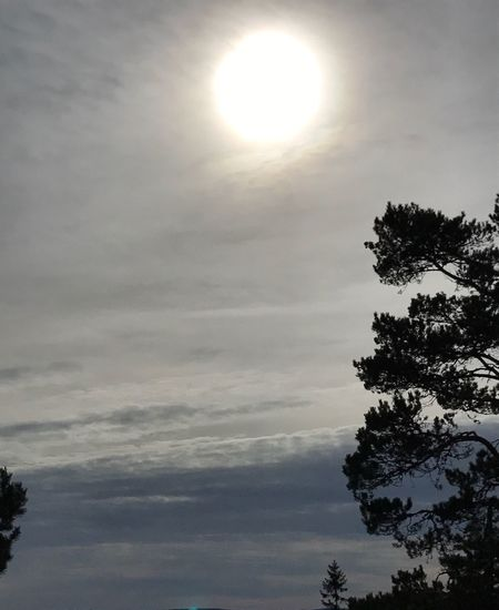 Sky Sun Nature Beauty In Nature Cloud - Sky Tranquility No People Outdoors Day Skiing ❄ Rommé Skilodge Sweden