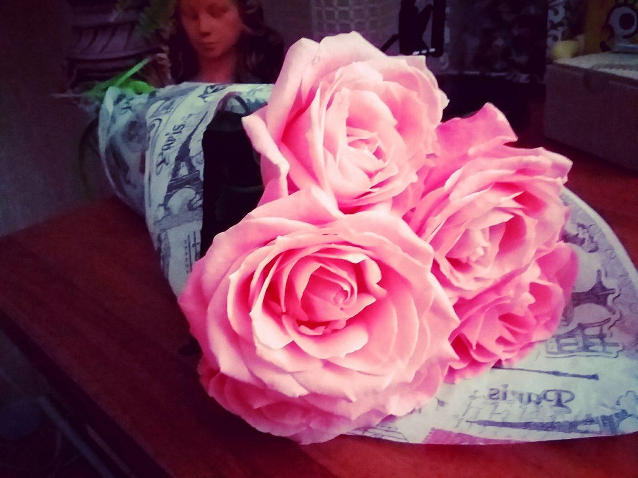Rose 🌹🌹🍃 😊