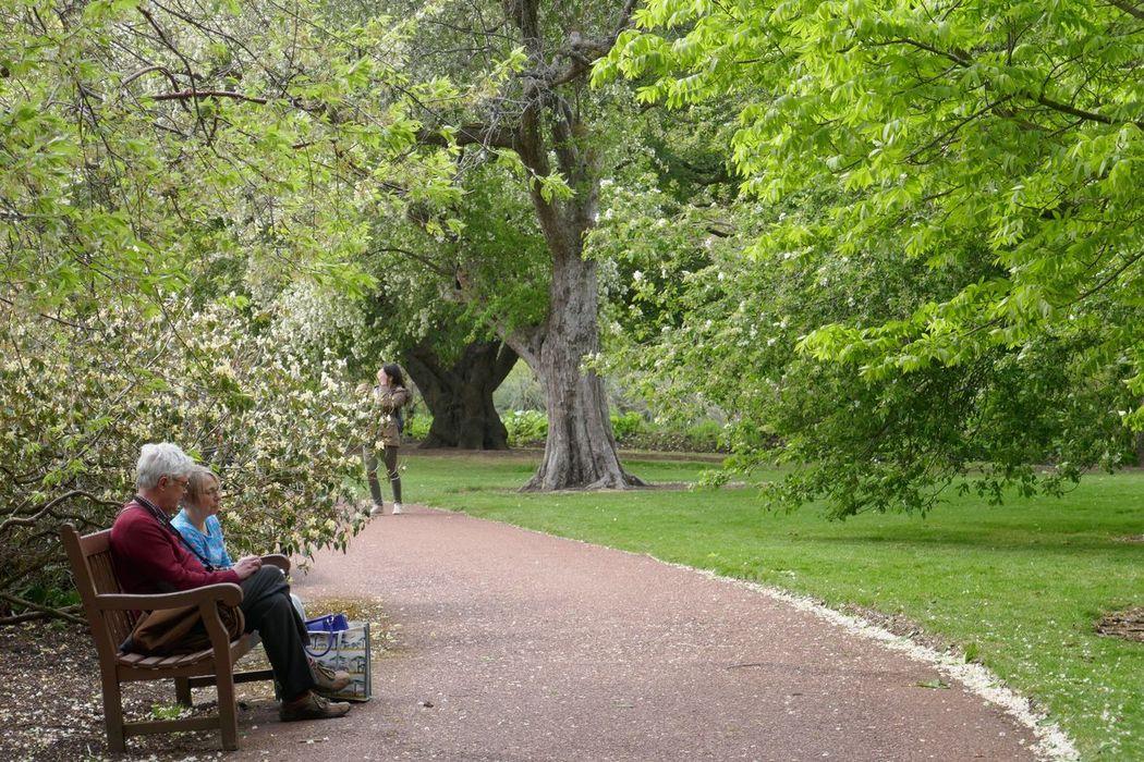 Goals Park BotanicalgardenOutdoors Edinburgh