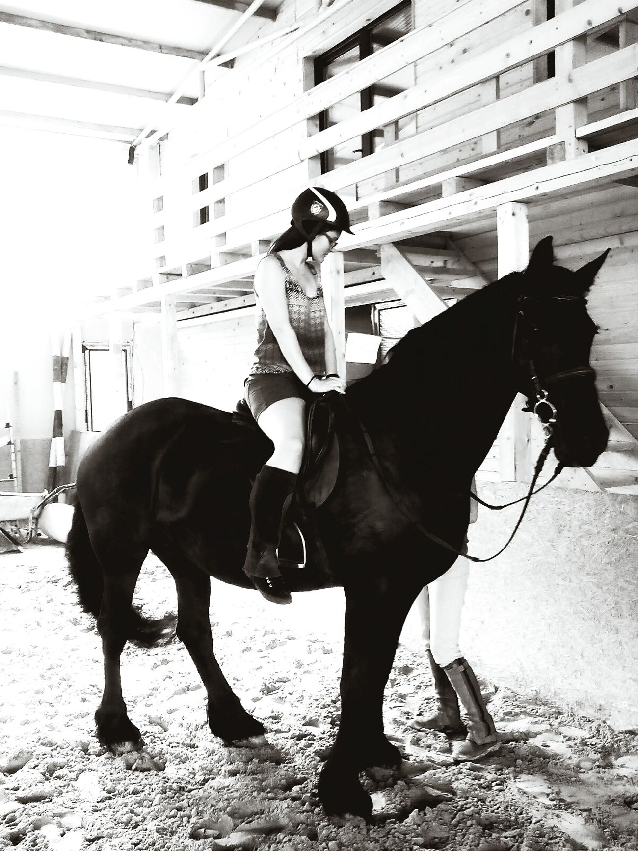 Hi! Check This Out Horse Riding Blackandwhite Horsepassion I Love Horses HorseNAround