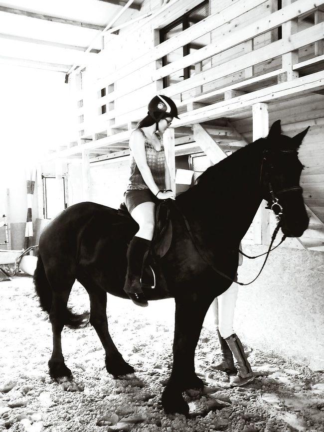 Hi! Check This Out Horse Riding Blackandwhite Horsepassion I Love Horses HorseNAround