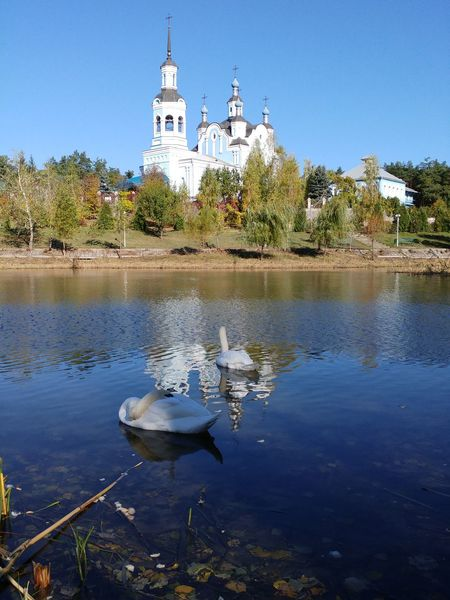 Lake Water Reflection Landscape Outdoors Architecture Nature No People Tree Sky Day Church Swans Swan Swan Lake Birds Life Temple Christian Park Ukraine Travel Destinations Travel Tranquility Tranquil Scene