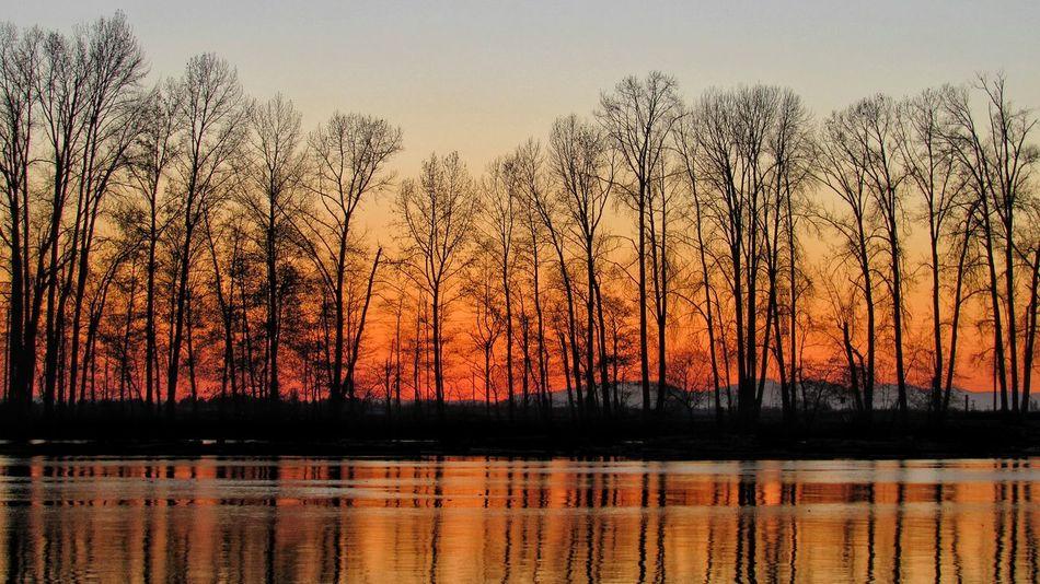 sundown on the fraser Photography River RedSky Sunset Fraserriver