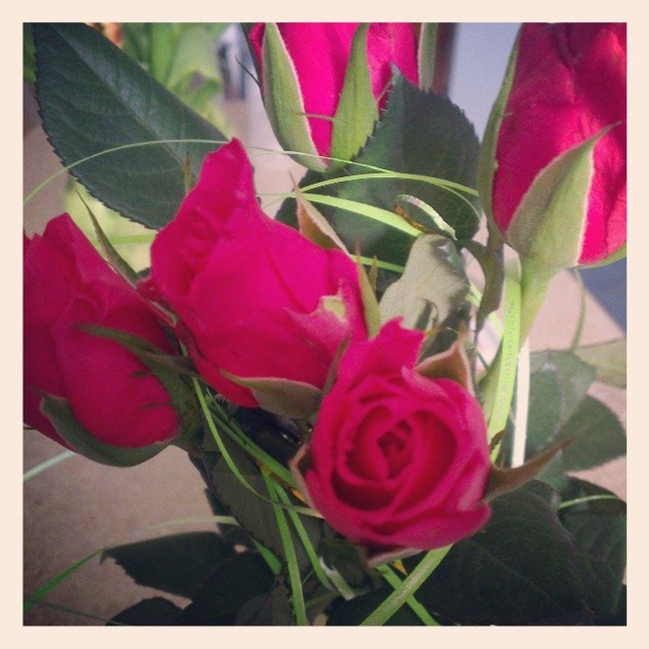 8марта цветы розы поздравляю