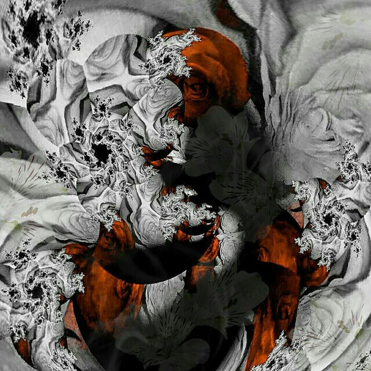 Abstract Des Fleurs