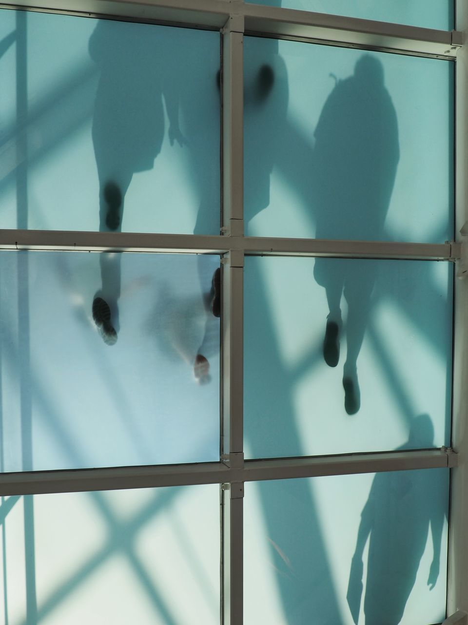 indoors, window, shadow, day, close-up, no people