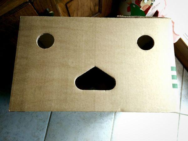 Shocked Box Shocked Face Shocked Cardboard Cardboard Banana Boxes