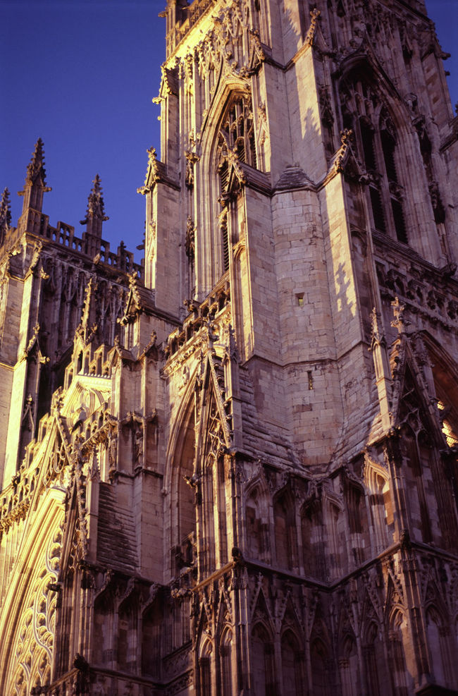 illuminated at night: york minster gothic cathedral, uk Architecture Building Building Exterior Built Structure Cathedral Church England Landmark Prayer Low Angle View Minster Old Place Of Worship Religion Spirituality Stone Tower Uk York Yorkshire