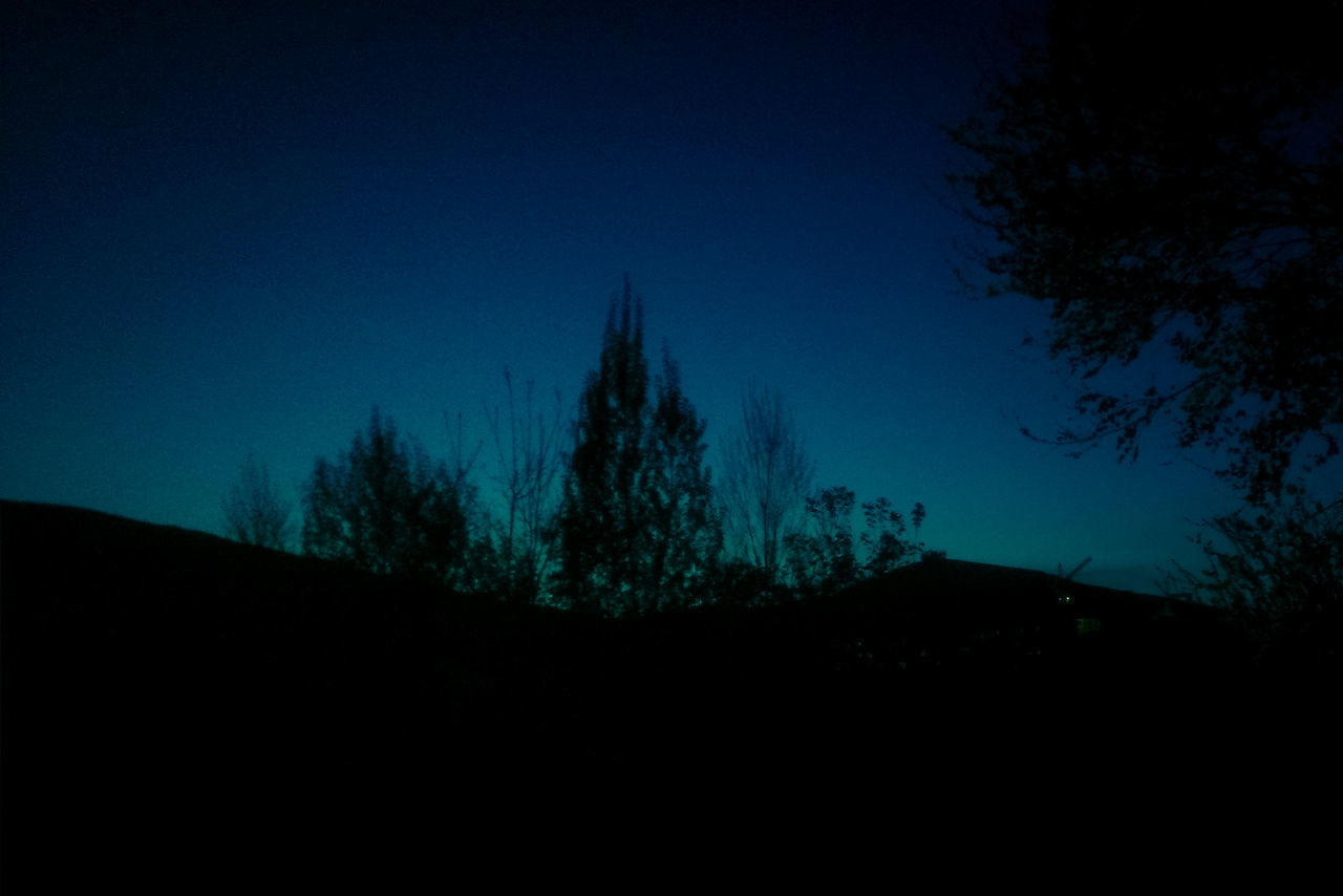 silhouette, night, clear sky, nature, no people, blue, tranquility, sky, landscape, tree, beauty in nature, outdoors