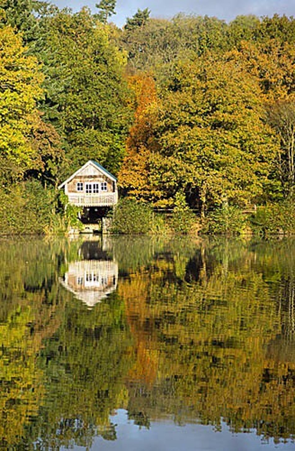 Winkworth Arboretum in Godalming Surrey, UK. Godalming Surrey Surrey Countryside Winkworth Arboretum Autumn Autumn Colors Autumn Leaves Fall Fall Colors Fall Beauty