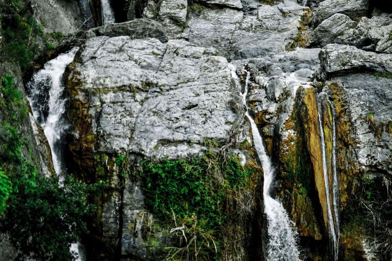 Cascade Eau Chute D'eau Roches Verdures Nature Environnement Day Water Waterfall Environment Landscape Natur Rock Corse Corsica