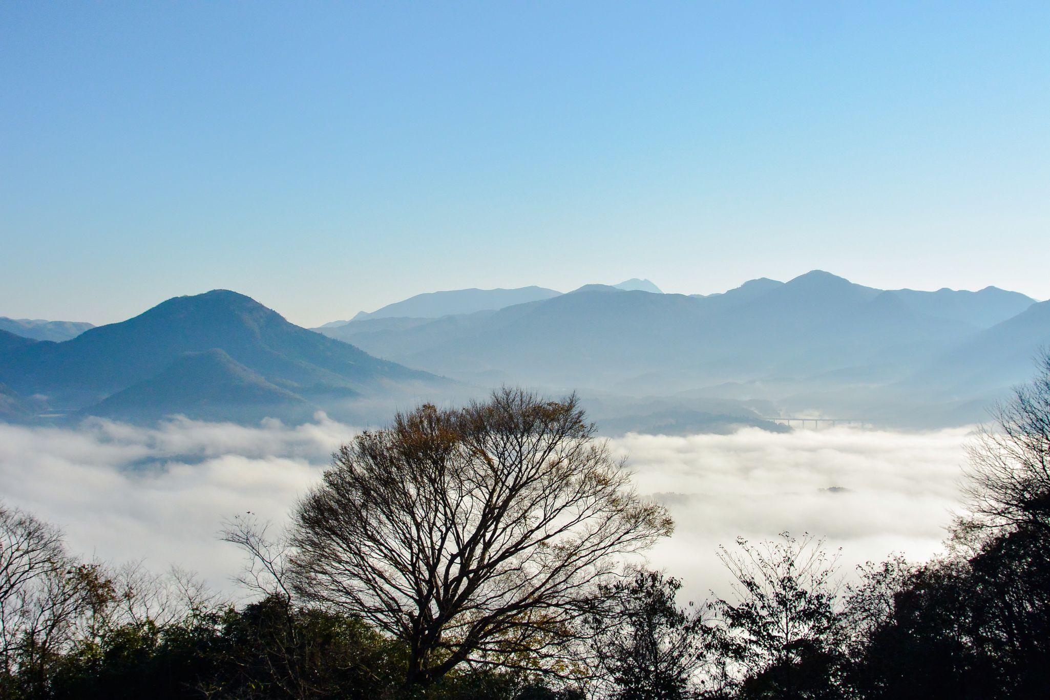 昨日の雲海。 CLOUDSEA Nature Landscape Foggy Morning Nikon1V2 Afsnikkor18to200mm Japan Sky Clouds