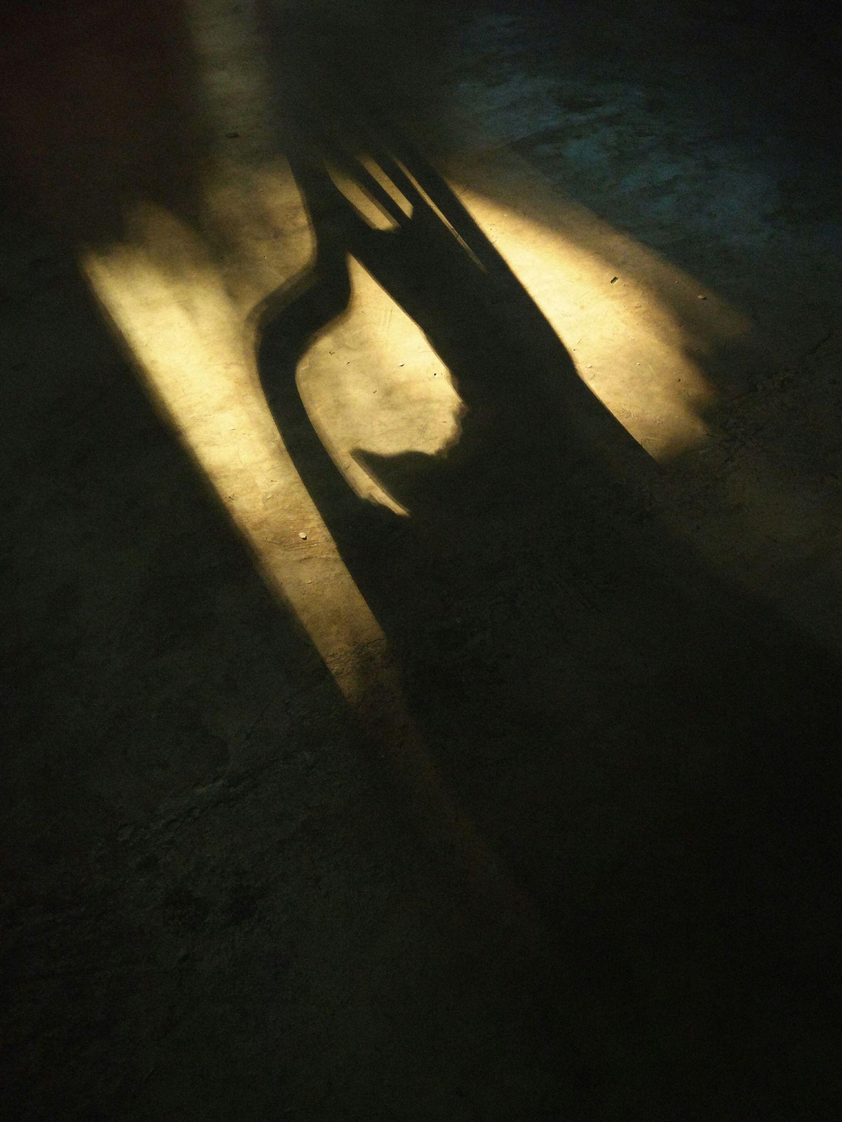 Shadow Sitinginthedark