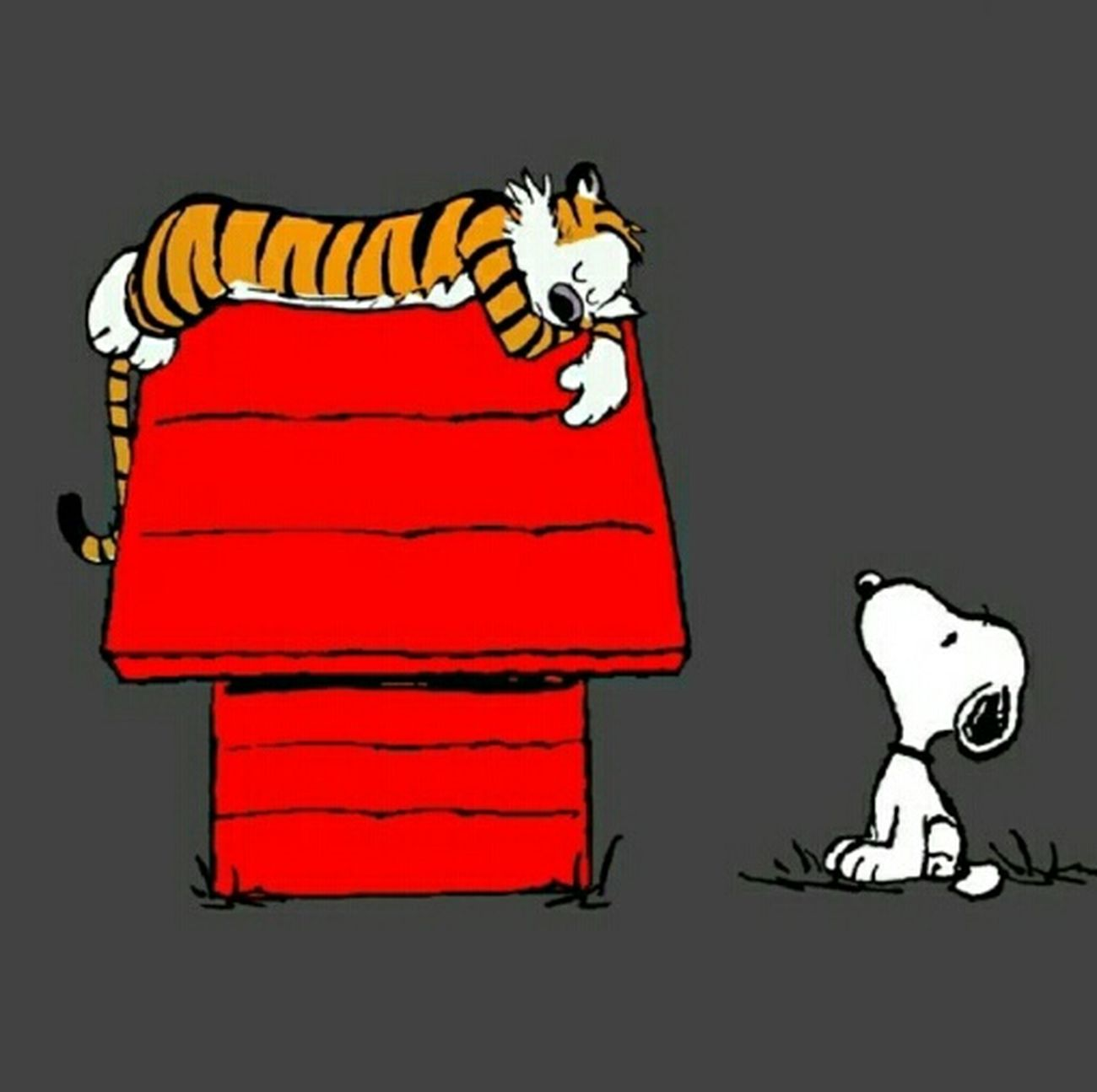 Snoopy Hobbes Calvin And Hobbes Peanuts 💓
