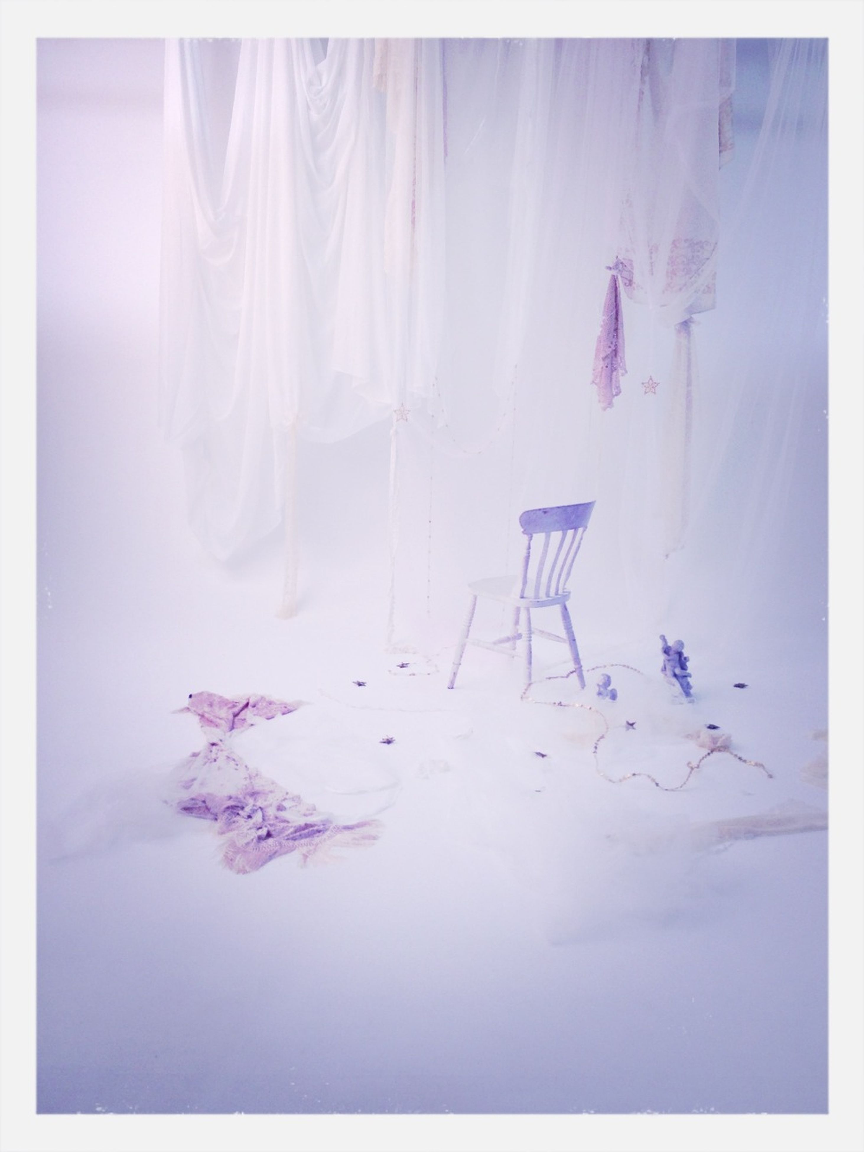 transfer print, auto post production filter, flower, multi colored, nature, growth, no people, indoors, beauty in nature, day, purple, plant, white color, fragility, panoramic, close-up, blue, digital composite, creativity
