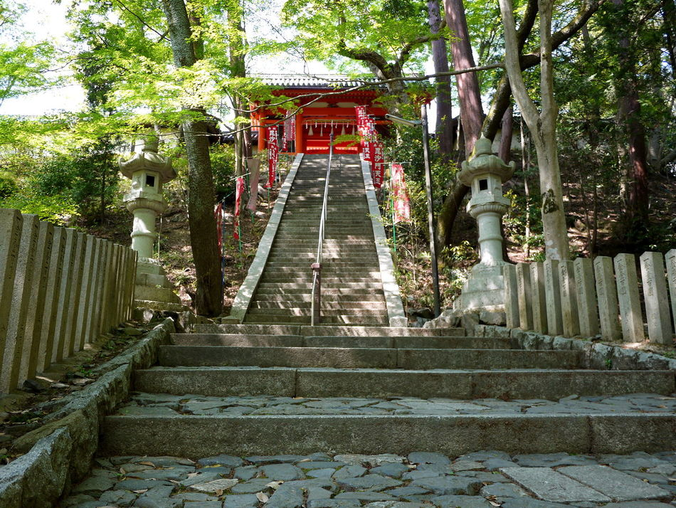 Architecture Bishamondo Built Structure Diminishing Perspective Japanese Temple No People Red Gate Step Stone Lanterns The Way Forward Travel Destinations Trees