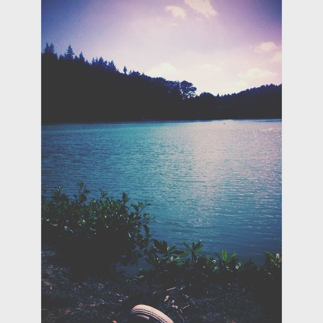 Magical view. Lake View Summer Relaxing