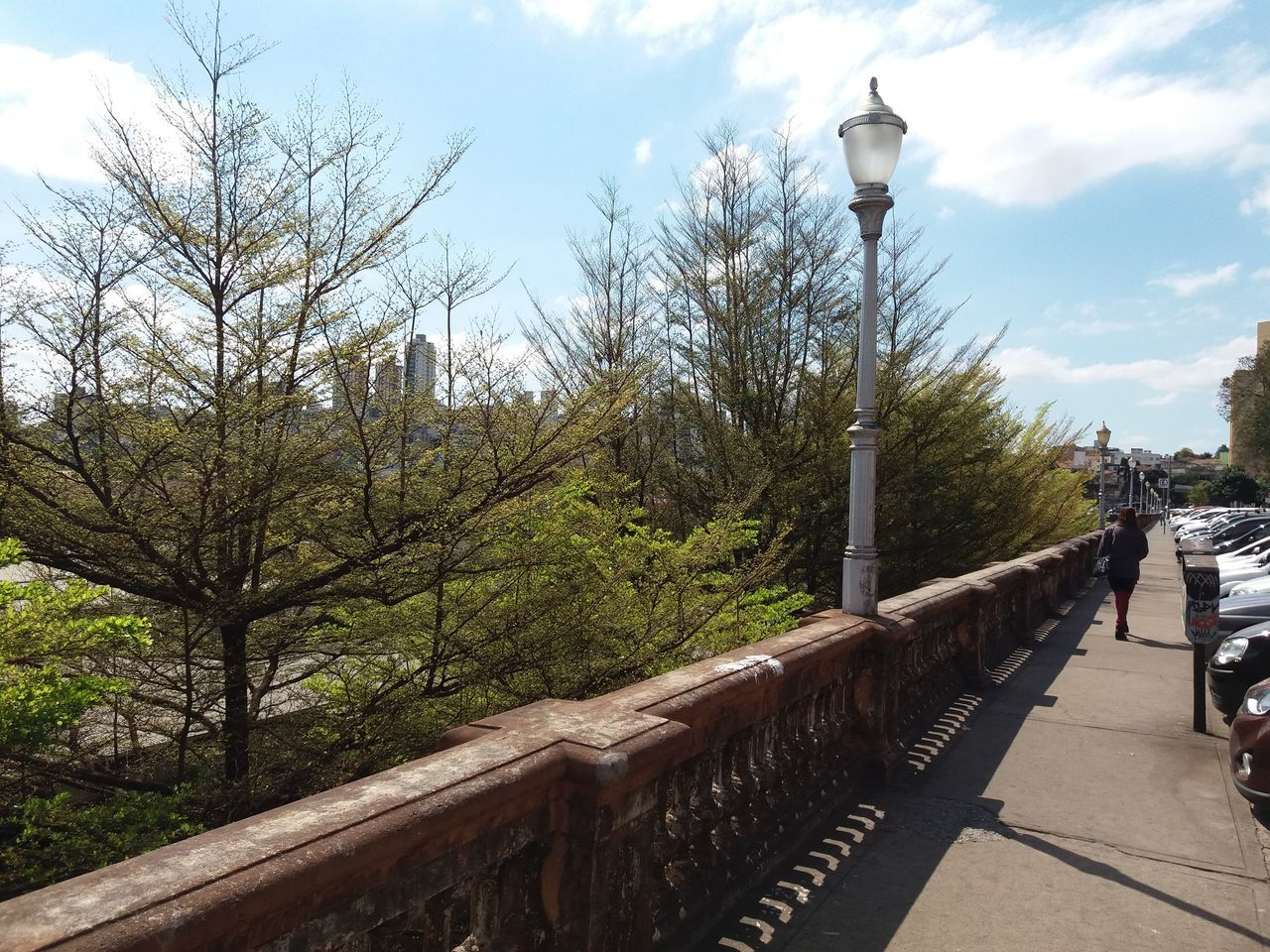 tree, railing, lighting equipment, walking, day, real people, full length, outdoors, one person, sky, the way forward, nature, bare tree, walkway, architecture, people