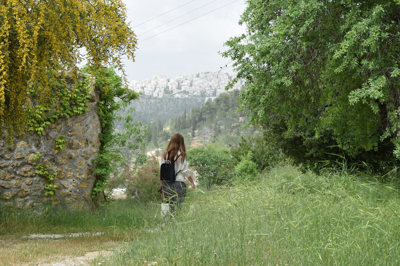 Adventure Backpack Beauty In Nature Field Forest Grass Green Color Growth Landscape Leisure Activity Lifestyles Mountain Nature Outdoors Real People Scenics Standing Togetherness Tranquil Scene Tranquility Traveling Tree Two People Walking Young Women