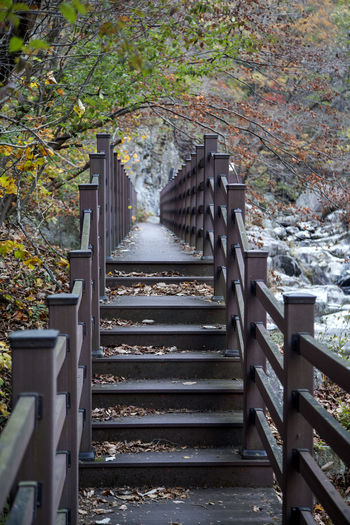 Deoksan Valley in Jangsugun, Jeonbuk, South Korea. Autumn Day Fashion Nature No People Outdoors Railing Staircase Stairway Steps Steps And Staircases Tree Vacations Valley