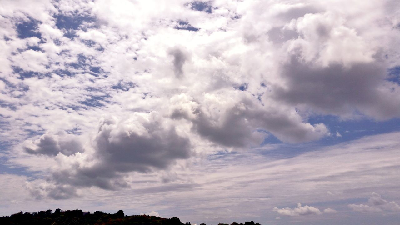 cloud - sky, sky, nature, beauty in nature, low angle view, no people, scenics, animal themes, bird, flying, outdoors, day, animals in the wild, backgrounds, one animal