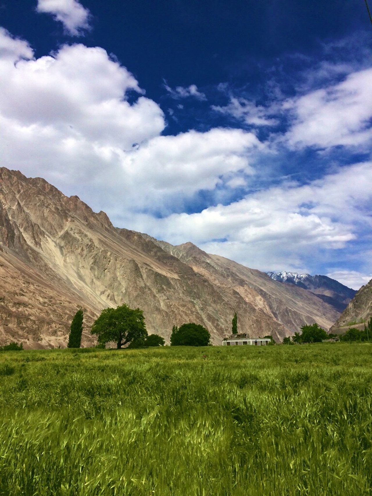 Landscape Grass Tranquil Scene Scenics Tranquility Solitude Sky Countryside Field Non-urban Scene Cloud Grassy Nature Growth Beauty In Nature Blue Remote Day Green Color Plant India JammuandKashmir Turtuk