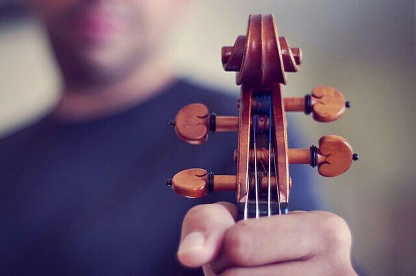 Violin Scroll Violinist Life Of A Musician Spilden Selfportrait Music Instrument